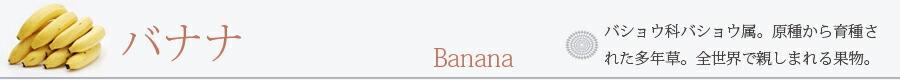 バナナ 三尺バナナ 2