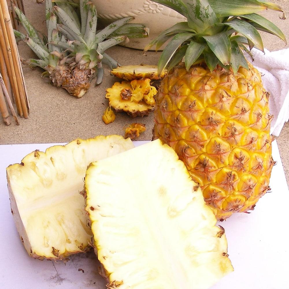 パイナップル ソフトタッチ